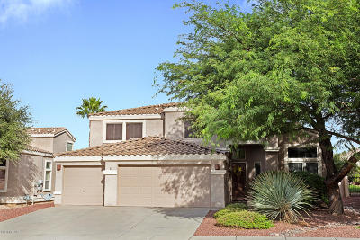Oro Valley Single Family Home For Sale: 234 W Brinkley Springs Drive