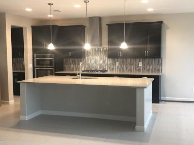 Single Family Home For Sale: 2324 W Virgo Street