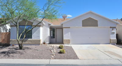 Tucson Single Family Home For Sale: 8540 N Winchester Creek Drive