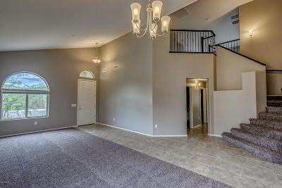 Marana Single Family Home For Sale: 9709 N Melandra Way