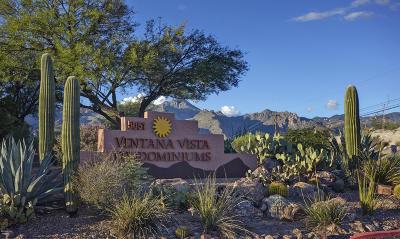 Tucson Condo For Sale: 5051 N Sabino Canyon Road #2117