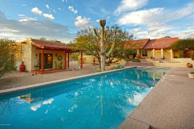 Tucson Single Family Home For Sale: 8120 E Sabino Drive