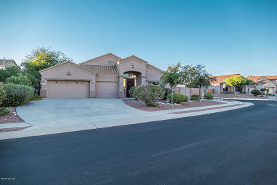 Tucson Single Family Home For Sale: 4867 N Louis River Way
