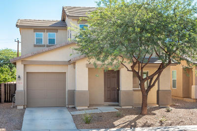 Tucson Single Family Home For Sale: 3454 N Sierra Springs Drive