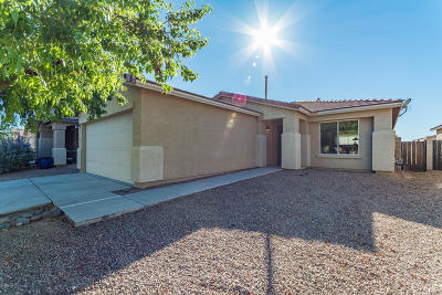 Tucson Single Family Home For Sale: 9293 N Centipede Avenue