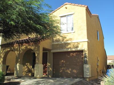 Sahuarita Single Family Home Active Contingent: 14355 S Camino Vallado