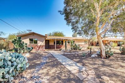 Tucson Single Family Home For Sale: 321 S Eastbourne Avenue
