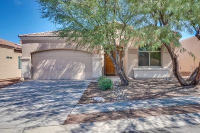 Vail Single Family Home For Sale: 10425 S Avenger Lane
