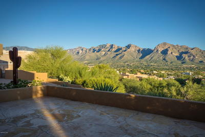 Oro Valley Single Family Home For Sale: 1030 W Dream Chaser Court