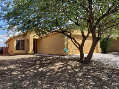Pima County, Pinal County Single Family Home For Sale: 6859 S Cottontail Run Avenue