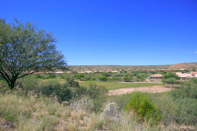 Single Family Home For Sale: 38054 S Desert Highland Drive