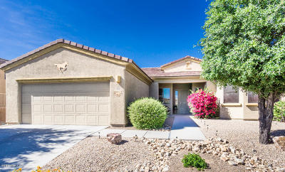 Green Valley Single Family Home For Sale: 1152 W Tenniel Drive