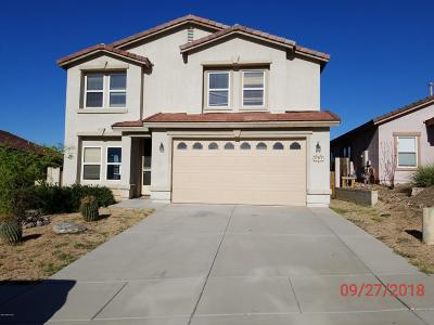Pima County Single Family Home For Sale: 13275 N Tanner Robert Drive