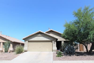 Tucson Single Family Home For Sale: 5226 W Canyon Towhee Street