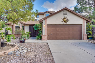 Tucson Single Family Home For Sale: 5101 W Citrine Place