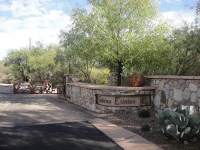 Tucson Residential Lots & Land For Sale: 10245 E Sabino Estates Drive #44