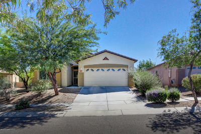 Vail Single Family Home For Sale: 17589 S Garden Sage Loop