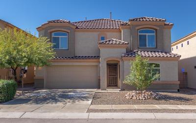 Vail Single Family Home For Sale: 12384 E Calle Riobamba