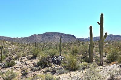 Residential Lots & Land For Sale: E Desert Ridges