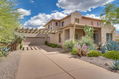 Oro Valley Single Family Home For Sale: 12886 N Eagleview Drive
