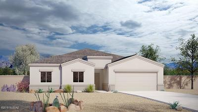 Tucson Single Family Home For Sale: 6230 S Water Fountain Drive