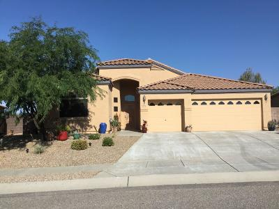 Pima County Single Family Home For Sale: 3572 S Prism Sky Drive