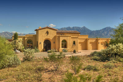 Pima County, Pinal County Single Family Home For Sale: 2334 S Placita El Alamito