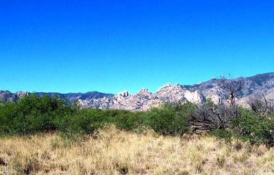 Cochise Residential Lots & Land For Sale: 40.2ac N Of Red Head Road