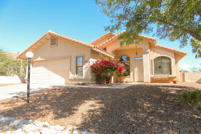 Pima County Single Family Home For Sale: 2420 W Catalpa Road