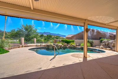 Tucson Single Family Home For Sale: 37041 S Hollygreen Drive