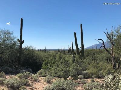Tucson Residential Lots & Land For Sale: 3855 N Whiptail Wash Place #3