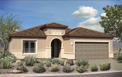 Single Family Home For Sale: 14058 E Via Cerro Del Molino E