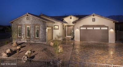 Pima County Single Family Home For Sale: 12858 N Eagles Summit Drive