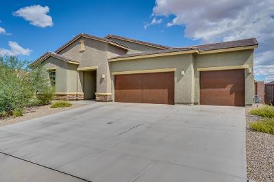 Sahuarita AZ Single Family Home For Sale: $375,000