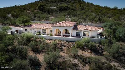 Tucson Single Family Home For Sale: 9721 E Kleindale Road