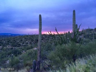 Tucson Residential Lots & Land For Sale: 11900 E Ponce De Leon #58