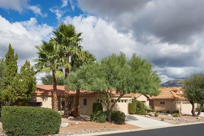 Tucson Single Family Home For Sale: 64544 E Squash Blossom Lane