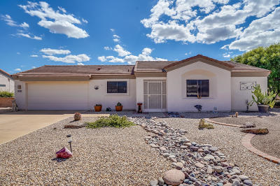 Green Valley  Single Family Home For Sale: 4351 S Desert Jewel Loop
