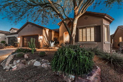 Oracle Single Family Home For Sale: 60501 E Arroyo Vista Drive