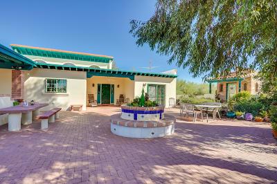 Tucson Single Family Home For Sale: 14241 W Scotland Street W
