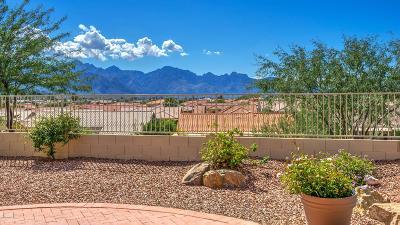 Tucson Single Family Home For Sale: 62165 E Amberwood Drive