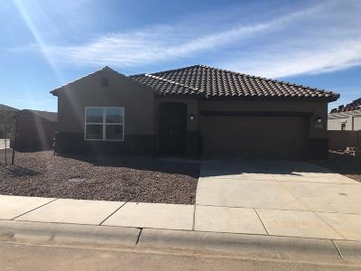 Marana Single Family Home For Sale: 11665 W Fayes Glen Drive