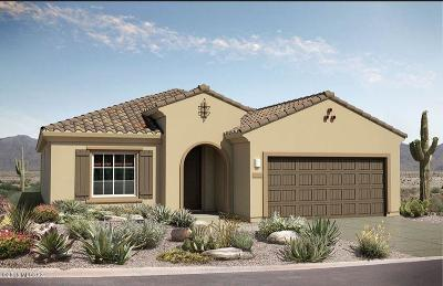 Single Family Home For Sale: 14082 E Via Cerro Del Molino Boulevard E