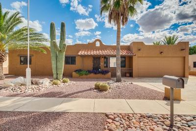 Tucson Single Family Home For Sale: 3871 W Sunny Hills Place