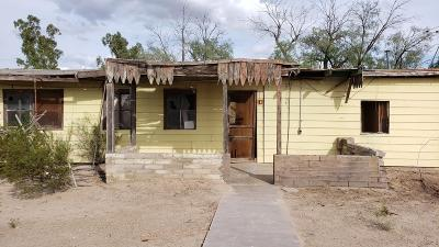 Tucson Single Family Home For Sale: 11460 N Cleveland Place N