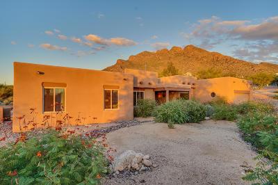 Tucson Single Family Home For Sale: 355 E Newport Drive