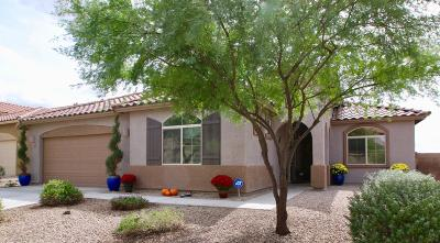 Pima County Single Family Home For Sale: 11353 W Smooth Pumice Street