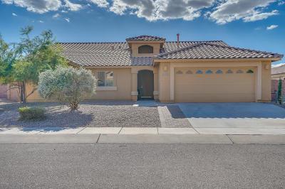 Sahuarita AZ Single Family Home For Sale: $236,000