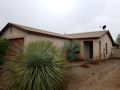 Tucson Single Family Home For Sale: 6182 S Sarah Elizabeth Drive