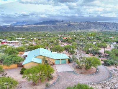 Tucson Single Family Home For Sale: 505 N Avenida Venado